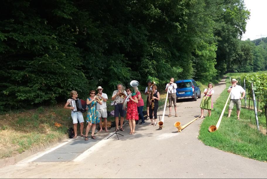 Rohrbacher Weinberglauf 2